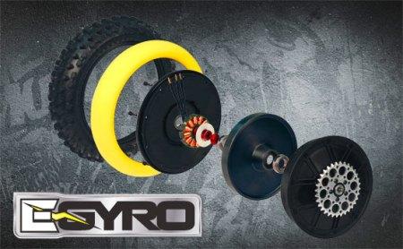Atomik E-gyro Components